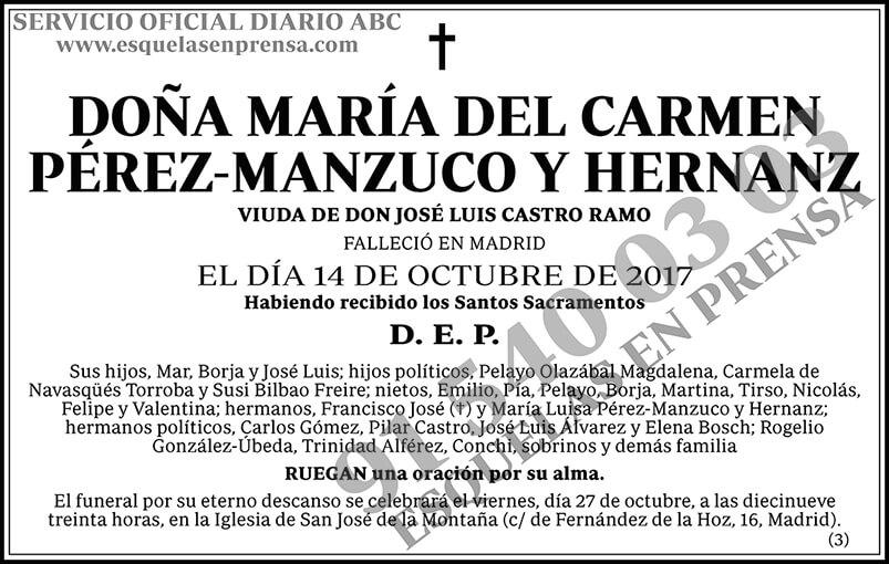 María del Carmen Pérez-Manzuco y Hernanz